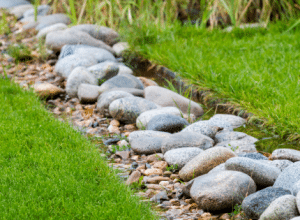 French drains collect excess water from the surrounding soil