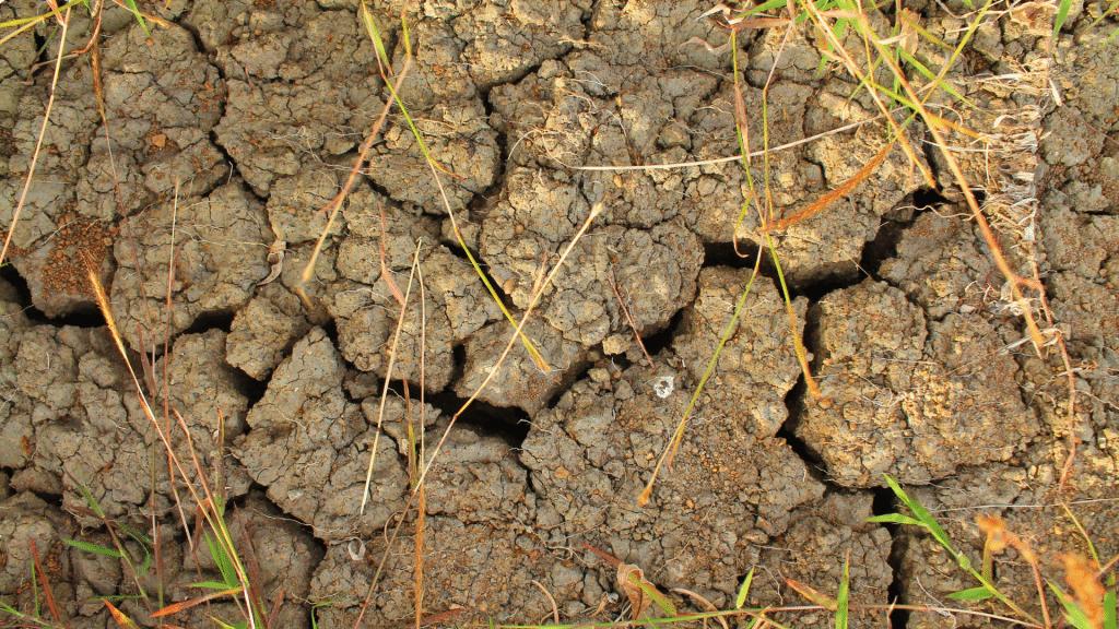 dry soil foundation
