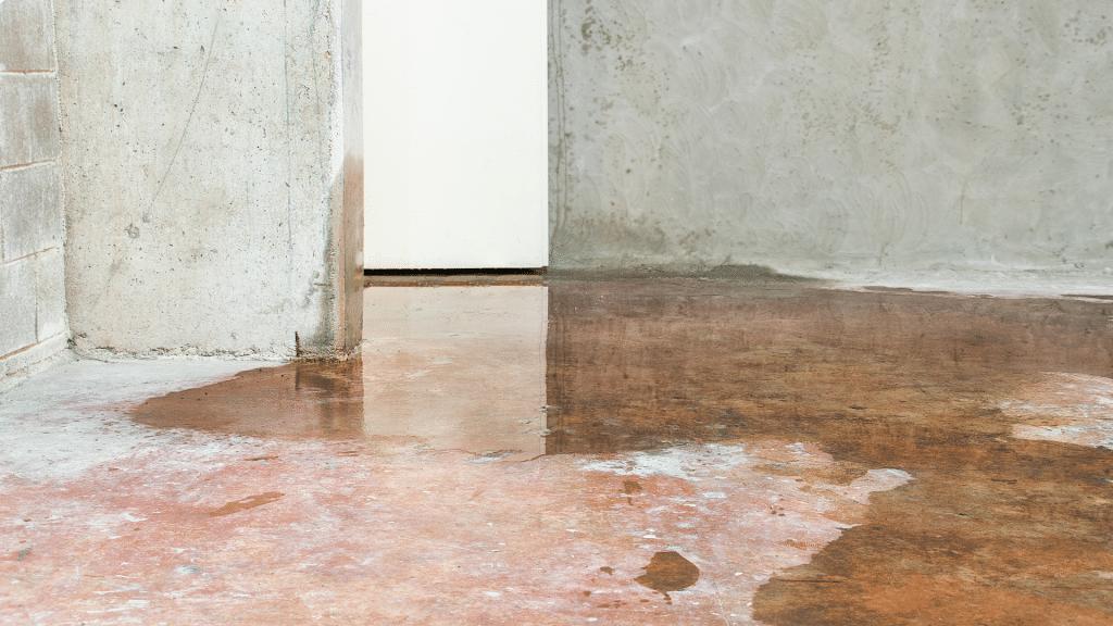 wet basement foundation